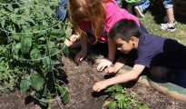 Learning Garden – Club Estates ES